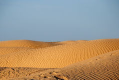 Embossed dunes in the desert Royalty Free Stock Photo