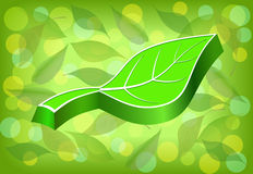 Embossed green leaf. Stock Images