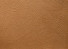 Embossed leather Stock Photo
