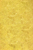 Embossed texture lemon gold patterned abstract flowers Royalty Free Stock Photography