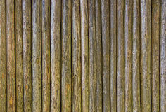 Embossed texture of wooden rounded planks Stock Image