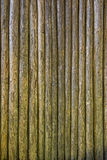 Embossed texture of wooden rounded planks Stock Images