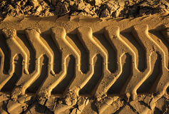Embossed trail excavator tracks on the sand. closeup texture of Royalty Free Stock Image