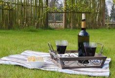 Embotelle y dos vidrios de vino rojo en una bandeja Imagenes de archivo