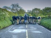 Embouteillage irlandais photo libre de droits