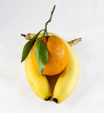 Embrace of bananas Royalty Free Stock Images