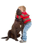 Embraces a boy and dog Stock Photography