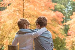 Free Embracing Brothers Talking To Each Other Royalty Free Stock Photo - 124609365