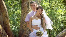 Embracing in the park. Young newlyweds embracing in the park in the shadow of giant platan Stock Image