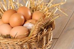 Embrague de huevos manchados Imagen de archivo libre de regalías