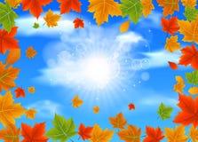 Embranchez-vous avec Autumn Maple Leaves illustration de vecteur