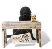 Embrassant la cabine - Dante, noircissent le laboratoire de chocolat photographie stock libre de droits