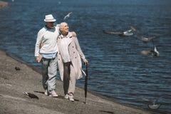 Embrassement de marche de couples supérieurs au quai et regarder des oiseaux de vol Image stock