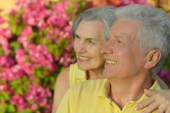 Embrassement plus âgé heureux de couples Image libre de droits