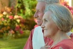 Embrassement plus âgé heureux de couples Photo stock