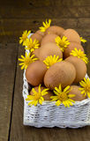 Embreagem dos ovos na cesta branca com margaridas amarelas Fotografia de Stock