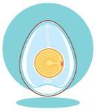 embrião da galinha Ovo ilustração do vetor