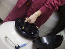 Embriones de congelación del Embryologist para el staorage Fotos de archivo
