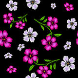 Embroidered pink and white  flowers on black background seamless Stock Image