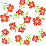 Embroidered red orange  flowers on white background seamless pat Royalty Free Stock Images