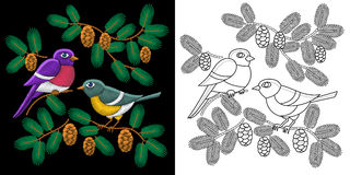 Embroidery birds design. Collection of fancywork elements for patches and stickers. Coloring book page with two sparrows, fir tree branches and pine cones Stock Image