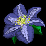 Embroidery blue flower angle pattern. Vector traditional folk blue clematis on black background for clothing design Stock Images