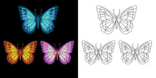 Embroidery butterfly design Stock Photo