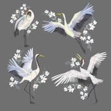 Embroidery with crane bird. Fashion decoration. Design element Vector royalty free illustration