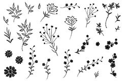 Free Embroidery Flower Field Herb Collection. Fashion Print Patch Design Floral DIY Set. Stitched Texture Daisy Leaves Royalty Free Stock Photo - 101869675