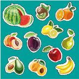 Embroidery fruits collection. Vector fashion stickers pineapple, bilberry, peaches, plum Royalty Free Stock Image