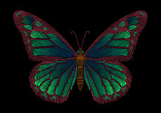 Embroidery green butterflies on a black background. Stock Photos