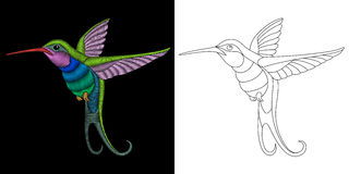 Embroidery hummingbird design Royalty Free Stock Images