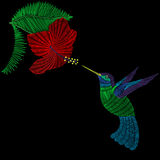 Embroidery hummingbird, exotic tropical bird with hibiskus flower Royalty Free Stock Photos