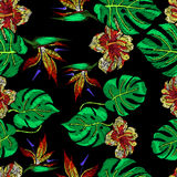 Embroidery Pattern for Design Royalty Free Stock Photo