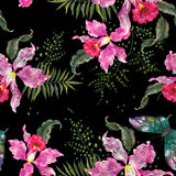 Embroidery trend floral seamless pattern with orchids and butter Royalty Free Stock Image