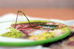 Embroidery work on the table. Interesting hand embroidery from home in work with a needle and green thread Stock Photo