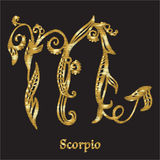 Embroidery with zodiac sign. Stock Image
