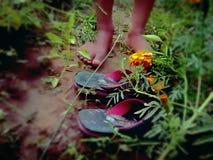 embroma el pie Imagen del pie fotos de archivo