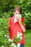 Embrome con rinitis alérgica en un jardín de la primavera Fotografía de archivo