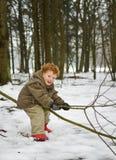 Embrome en nieve del bosque Imágenes de archivo libres de regalías