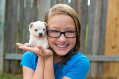 Embrome a la muchacha con jugar de la chihuahua del animal doméstico del perrito feliz Imágenes de archivo libres de regalías
