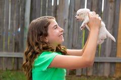 Embrome a la muchacha con jugar de la chihuahua del animal doméstico del perrito feliz Foto de archivo