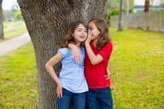 Embrome a las muchachas del amigo que susurran el oído que juega en un árbol del parque Imágenes de archivo libres de regalías