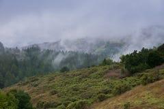Embrumez le roulement au-dessus des collines et des vallées, la Californie images libres de droits