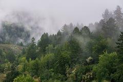 Embrumez le roulement au-dessus des collines et des vallées, la Californie photos stock
