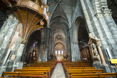 Embrun大教堂,内部 免版税库存照片