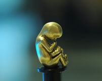 Embryo statue Royalty Free Stock Photography