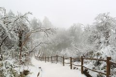 Emei Mountain scenery. With snow Royalty Free Stock Photos
