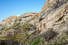Emenda de carvão nas caras sedimentares Fotos de Stock