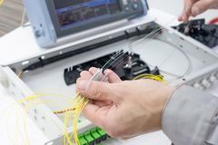 Emendando o cabo de fibra ótica na bandeja da especiaria imagem de stock royalty free